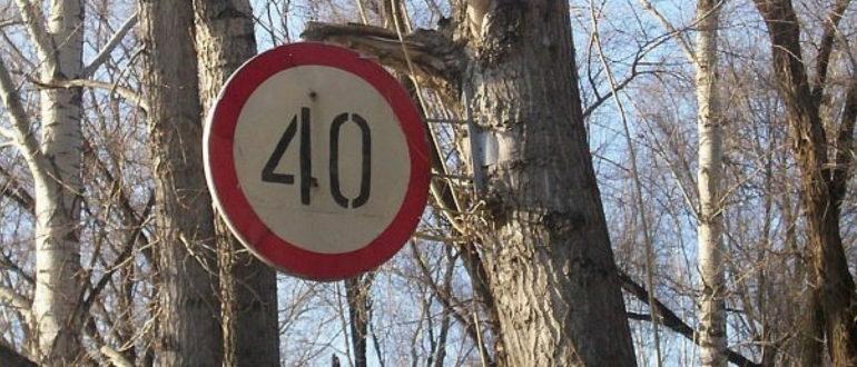 Нужно ли выполнять требования дорожного знака, установленного на дереве или палке?