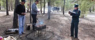 Решили пожарить шашлыков на природе или даче? Тогда придется заплатить штраф