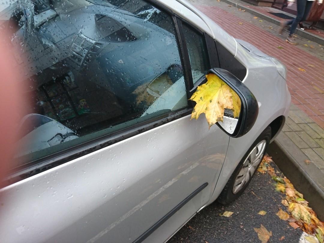 Осенний способ ограбить машину